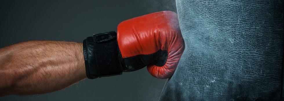 mma fight paris boxing
